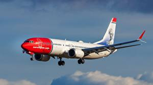 Обои Самолеты Боинг Летящий 737-8 MAX Авиация