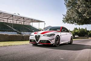 Картинки Alfa Romeo Белая 2019 Giulia Quadrifoglio Racing