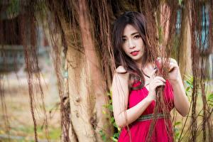 Фотографии Азиаты Взгляд Руки Шатенки молодая женщина