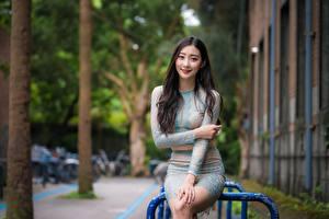 Картинки Азиаты Улыбается Руки Брюнетки Милый Сидит Юбка Размытый фон молодые женщины