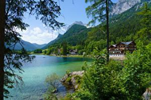 Фотография Австрия Гора Лес Озеро Здания Кустов Hintersee Ramsau Природа