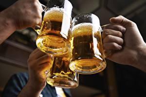 Обои Пиво Кружки Трое 3 Руки
