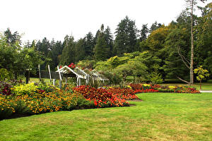 Картинки Канада Парки Ванкувер Кустов Газон Дерева Stanley Park Природа