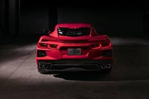 Обои Chevrolet Сзади Розовый 2020 Corvette C8 Stingray автомобиль