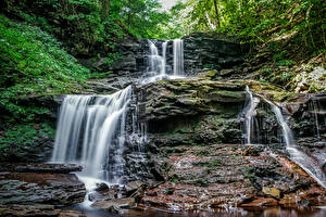 Фотографии Хорватия Водопады Скала Мха Waterfalls at Ricketts Glen Природа