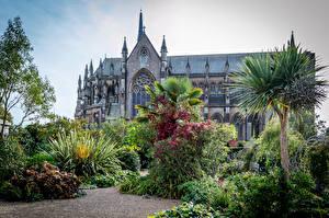 Фотографии Англия Замки Сады Кусты Пальма Arundel Castle and Gardens Города