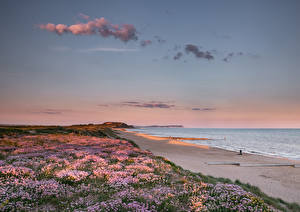 Обои Англия Берег Рассвет и закат Пляже Southbourne Beach Природа