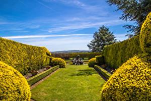 Картинка Англия Сады Фонтаны Дизайн Кусты Газон Ascott House Gardens Buckinghamshire Природа