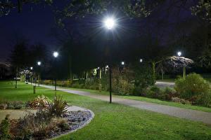 Картинки Англия Парк Ночные Уличные фонари Газон Кусты Arboretum Walsall Природа
