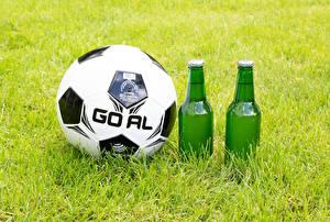 Фотографии Футбол Пиво Трава Мяч Бутылки спортивные Еда