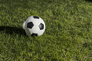 Картинка Футбол Траве Мячик спортивные