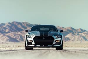 Картинка Форд Спереди Полосатый Mustang Shelby GT500 2020 авто