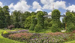 Обои Германия Сады Петуния Дизайн Кусты Botanischer Garten Augsburg Природа