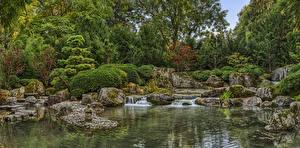 Фото Германия Сады Пруд Водопады Камень Кустов Дерево Augsburg Japanese garden Природа