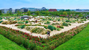 Картинки Германия Парк Дизайна Кустов Траве Heilbronn Природа