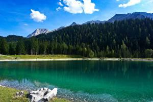 Фотография Черногория Гора Леса Озеро Лето Durmitor national Park, Piva lake Природа