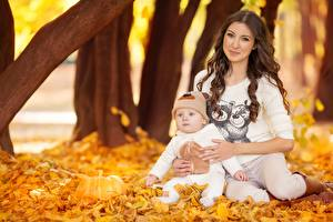 Картинка Мать Осень Лист Грудной ребёнок Шатенки Сидит Девушки