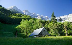 Картинка Горы Дома Лес Франция Скале Траве Альпы Provence region Природа