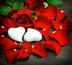 Фото Роза Красных Лепестки Серце 2 Цветы