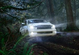 Фото Toyota Лес Белая Лучи света Sequoia TRD Pro Автомобили