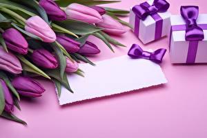 Обои Тюльпаны Шаблон поздравительной открытки Фиолетовых Подарков цветок