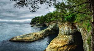 Картинки США Побережье Леса Вашингтон Скалы Classet Neah Bay Природа