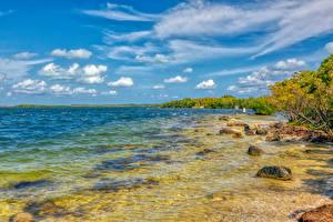 Картинка Америка Берег Камень Флорида Залив Key Largo Природа