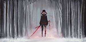 Фотографии Воины Мечи Снег Aoi Ogata Девушки