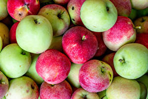 Обои Яблоки Вблизи Пища