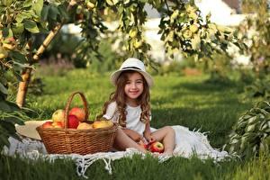 Картинки Яблоки Девочка Улыбка Сидит Корзины Шляпы Трава ребёнок