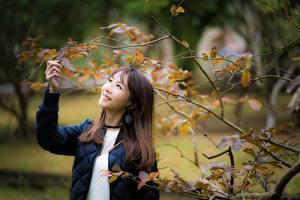 Фотографии Азиатки Боке Улыбается Ветвь Листва девушка