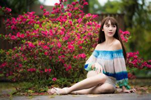 Обои для рабочего стола Азиатки Шатенки Сидя Боке Ноги Поза молодые женщины