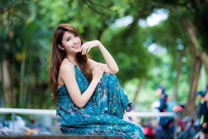 Фото Азиаты Платья Поза Размытый фон Милая Улыбается Шатенки Руки молодая женщина