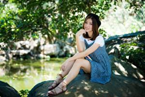 Фото Азиаты Ноги Платья Сидит Улыбка Шатенка Позирует молодые женщины