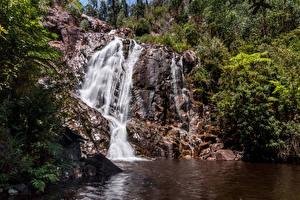 Обои Австралия Мельбурн Парки Водопады Скале Природа
