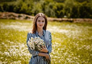Фотографии Ромашка Букет Шатенки Платья Рука Alexey Gilev девушка