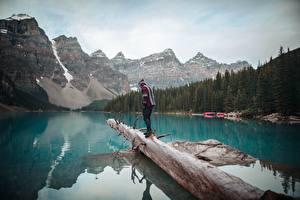 Фотографии Канада Озеро Гора Парк Банф Ствол дерева Путешественник Moraine Lake, Alberta