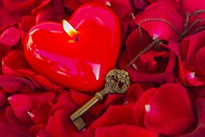 Картинки Свечи Вблизи Огонь Роза Ключа Лепестки
