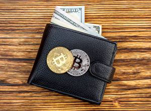 Фото Монеты Деньги Bitcoin Доллары Бумажник