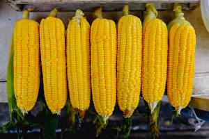 Фотография Кукуруза Вблизи