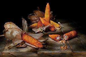 Фотографии Кукуруза Натюрморт Пища