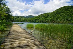 Фотография Хорватия Парк Озеро Горы Лес Мост Plitvice Lakes National Park Природа