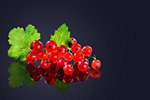 Фотографии Смородина Красных Отражение Пища