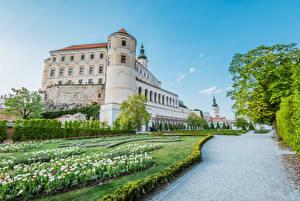 Фотография Чехия Замки Сады Тюльпаны Кусты Mikulov castle