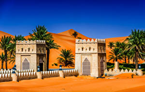 Фотография Объединённые Арабские Эмираты Тропический Храмы Уличные фонари Пальмы Abu Dhabi