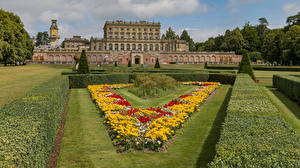 Фотография Англия Здания Сады Гостиница Газоне Кустов Cliveden House and Garden город