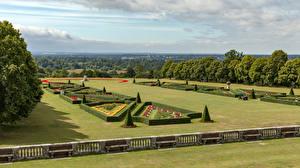 Картинки Англия Парк Дизайн Кусты Забор Дерево Cliveden Garden Природа