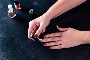 Фото Пальцы Рука Маникюр Темно красный