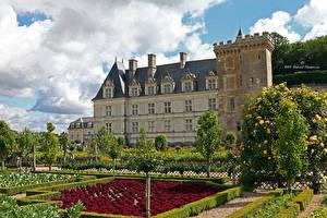 Фотография Франция Замки Сады Ландшафтный дизайн Кусты Chateau de Chaumont-sur-Loire