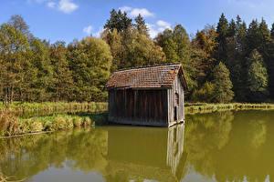 Обои для рабочего стола Германия Леса Осенние Озеро Бавария Burgwalden Природа
